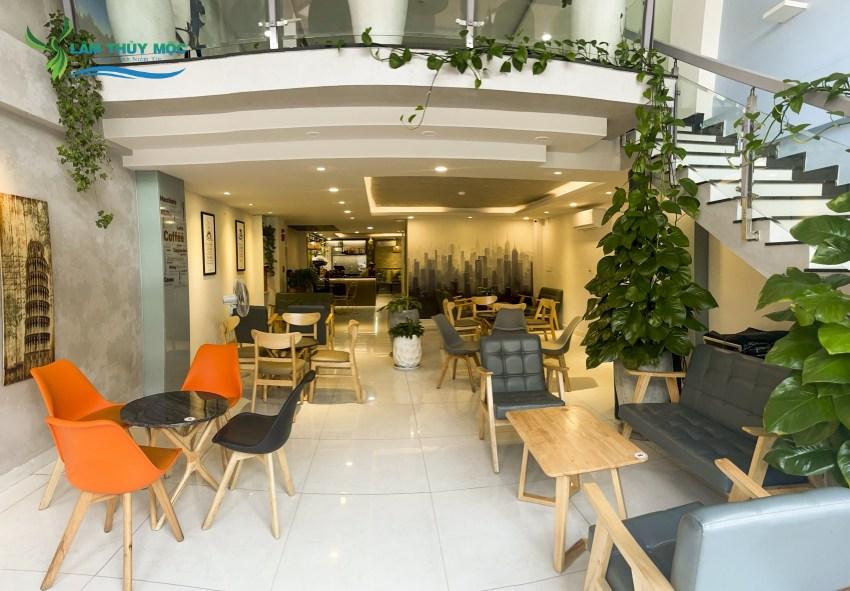 Không gian cafe văn phòng tại Lâm Thủy Mộc